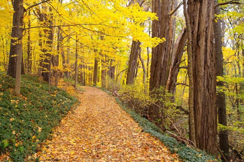 Fall Hiking in Chautauqua